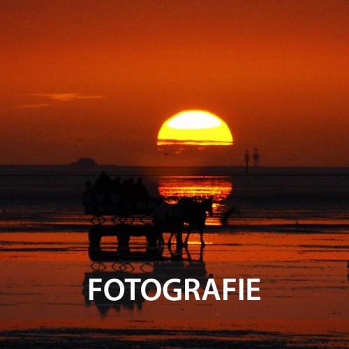 Fotografie - Präsentieren, Augenblicke behalten